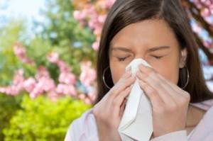 taking bee pollen for allergies